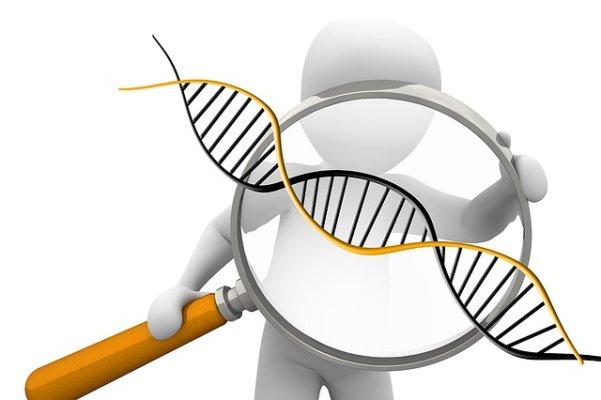お酒に強いのは遺伝が関係している3つの理由
